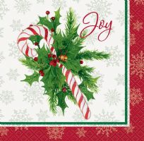 Candy Cane Christmas Beverage Napkins (16)